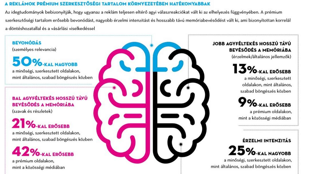 Az agyunk minőségi lapokat venne