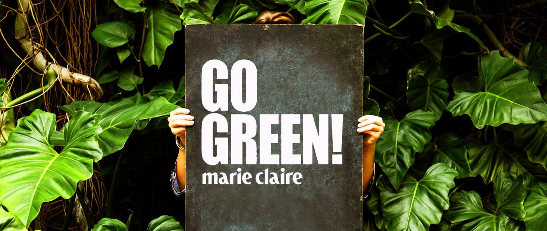mc_go green nyito